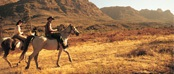 Couple enjoying the outdoor adventure of horseback riding in the desert